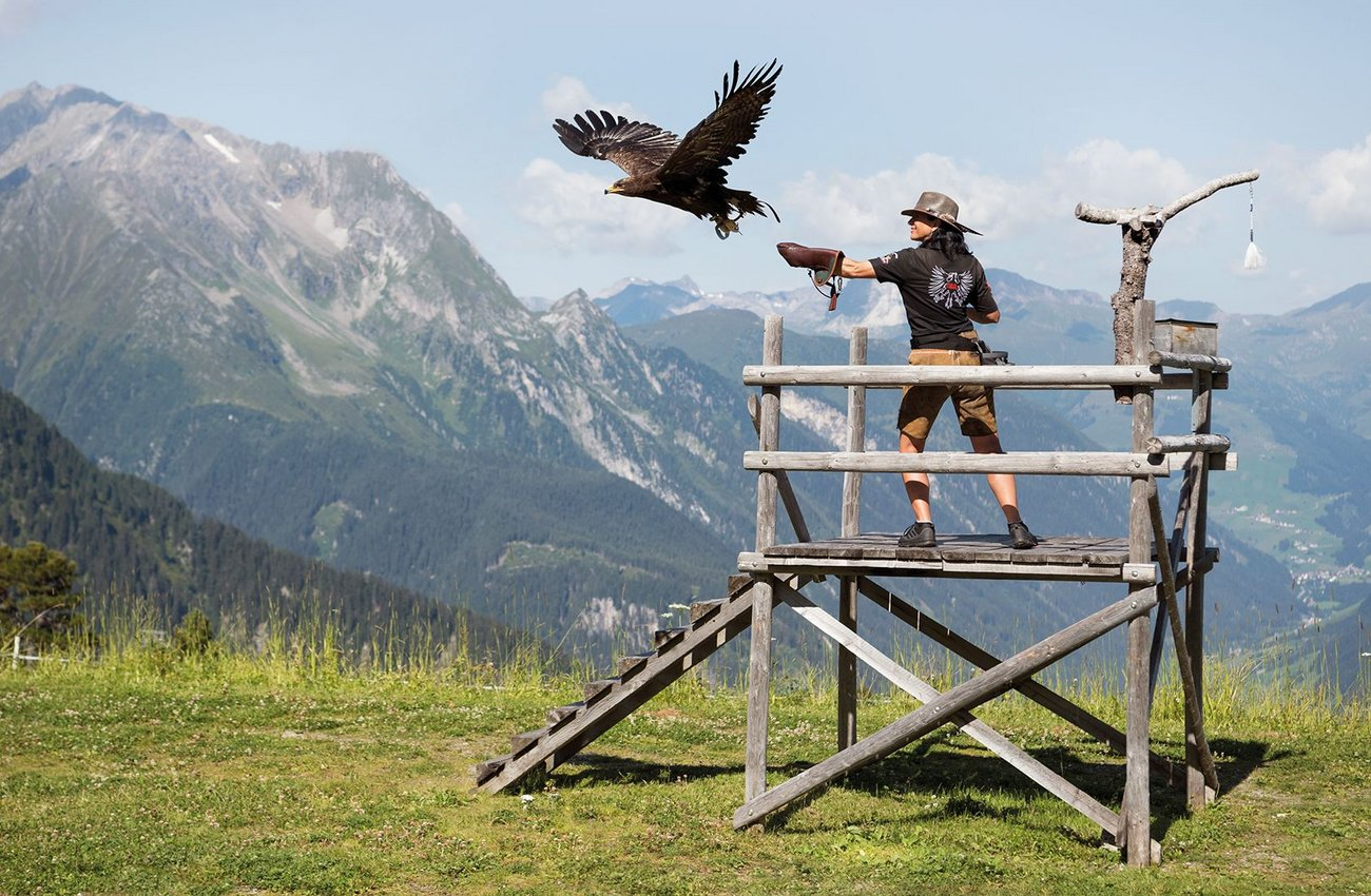Eagle's Stage Ahorn in Mayrhofen