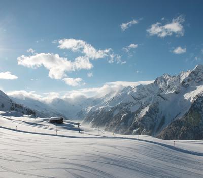 Winterlandschaft Ahorn